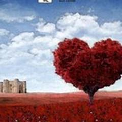 #bacidistrada, il nuovo concorso del Comune in occasione di San Valentino