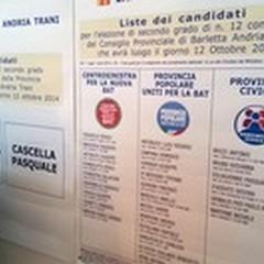 Revisione dinamica delle liste elettorali