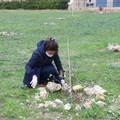 3Place, volontari in azione nel bosco urbano di Andria