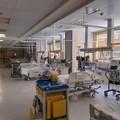 Coronavirus: 105 casi positivi risultati quest'oggi in Puglia, 3 nella provincia Bat
