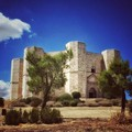 Castel del Monte: riqualificazione dell'area della pineta e riattivazione dell'Info Point turistico