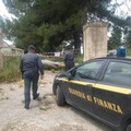 Capannone adibito a discarica abusiva, sequestrato opificio in contrada Martinelli