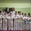 """Cinque piazzamenti sul podio per l'Universal Gym di Andria al """"Taekwondo Itf International Challenge"""""""