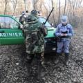 Falsi permessi di caccia, due persone denunciate