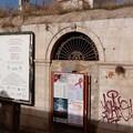 Nuovi avvistamenti di topi tra pendio S. Lorenzo, via Marco Polo e zona Camaggio