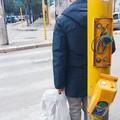 Inciviltà urbana: vandalizzato semaforo pedonale di via Firenze
