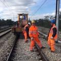Rubano ferro sulla tratta in costruzione Andria Barletta: recuperate 22 tonnellate di rotaie