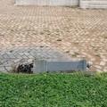 Nuova impresa ad Andria dei soliti vandali: divelta la fontanina del Monumento ai Caduti