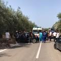 Secondo drammatico incidente sulla provinciale per Montegrosso: un ferito in codice rosso