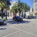 Festa patronale, i Carabinieri passano al setaccio la città