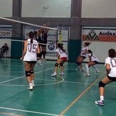 Audax Volley: vittoria in amichevole contro il Bitetto