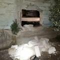 Tentativo di furto di mezzi agricoli sventato dalle guardie giurate della Vegapol