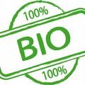 Biologico: la Conferenza Stato-Regioni approva il piano strategico nazionale
