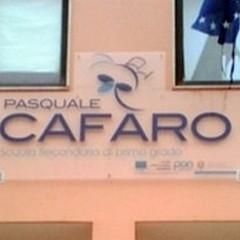 """Scuola  """"Verdi Cafaro """": al via il quinto Open Week"""