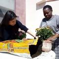 """Emergenza Covid-19, la comunità  """"Migrantesliberi """" promuove il welfare di relazione"""
