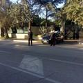 """""""Ferragosto sicuro """" ad Andria, 4 arresti e 2 denunce"""