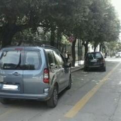 Corsia preferenziale dei Bus: a che serve se ci parcheggiano?