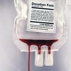 Giornata mondiale del donatore: raccolta sangue presso il Comune