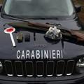 Caccia con mezzi non consentiti: si intensifica anche ad Andria l'attività dei Carabinieri Forestali