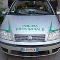 Regione: finalmente verso la piena operatività 80 guardie ambientali, già dipendenti della Polizia provinciale
