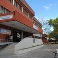 """Al Liceo  """"Carlo Troya """" di Andria le celebrazioni della giornata europea delle lingue"""