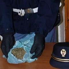 "Aveva marijuana ed un inibitore  ""jummer "": arrestato ad Andria pregiudicato"