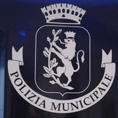 Bilancio delle attività di Polizia Municipale nel 2013