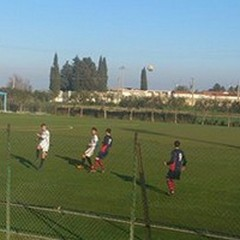 Carapelle - Nuova Andria 4-0: blackout degli uomini di Reggente