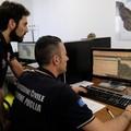 """Coldiretti Puglia preoccupata per la situazione meteo:  """"Disastrosi effetti sui campi """""""