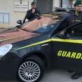 Beni per circa un milione di euro sequestrati a pregiudicato andriese. Il VIDEO