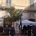Raccolta firme di Fratelli d'Italia Andria per quattro proposte di legge di iniziativa popolare