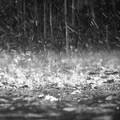 Allerta meteo gialla a Andria e su tutta la Regione