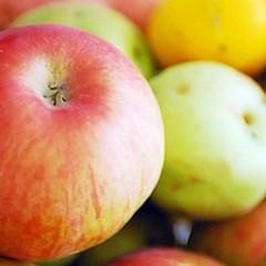 Miscioscia: «Eleviamo la percentuale di frutta nei succhi»