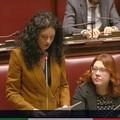 L'on. Galizia interroga il Ministro su pannolini monouso potenzialmente pericolosi. Il VIDEO
