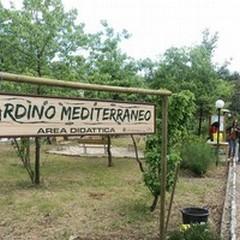 Torna a splendere il Giardino Mediterraneo tra pubblico e privato