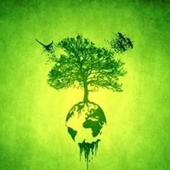 """Ultimo appuntamento di Green Life con tema  """"l'energia """""""