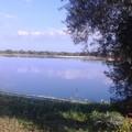 Puglia sitibonda: si continua a perdere acqua dagli invasi regionali