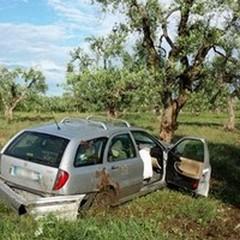 """Auto contro albero sulla provinciale  """"Andria-Bisceglie """""""