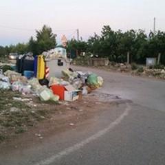 Rifiuti in zona Castel del Monte: disagi per villeggianti causati dai disservizi sulla raccolta