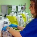 Donazioni di sangue: la città di Andria campione di generosità