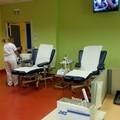 Carenza sangue in Puglia, l'appello di Fidas: «Donate»