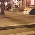Via Annunziata e via Bandiera e Moro: individuati i primi sporcaccioni