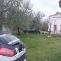 Un trend che si conferma: la provincia di Barletta-Andria-Trani in cima alla classifica delle auto rubate