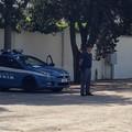 Scoperta piantagione di marijuana nelle campagne tranesi, arrestato 48enne andriese