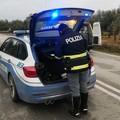 Predoni georgiani arrestati dalla Polstrada: agivano sulle aree di servizio dell'A14