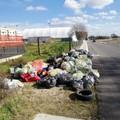 Cleanup Day: 130 volontari all'opera per ripulire il quartiere San Valentino