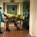 Coronavirus, tre decessi nella Bat ma nessun nuovo caso positivo