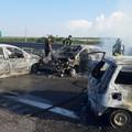 Assalto sull'A/14 ad un portavalori della Sicuritalia sul tratto Canosa di Puglia - Cerignola