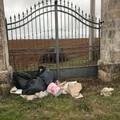 """Strade ed abbandono di rifiuti:  """"Le Province provvedano la Regione se può collabori """""""