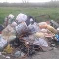 Cumuli di rifiuti. Accade (anche) in viale Sforza